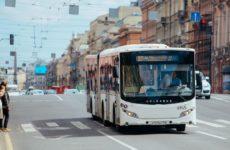 Сколько стоит проезд в Санкт-Петербурге 2019