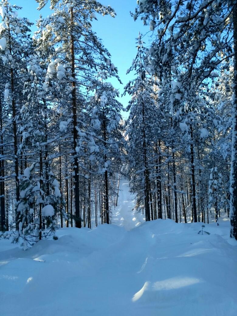 снежный спуск для санок в комплексе «РОККО»