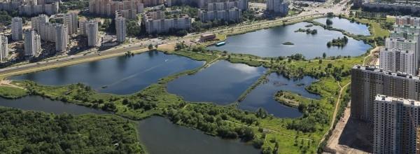 Озера Фрунзенского района фотография с высоты