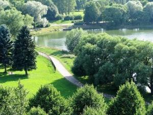 Дорожка, озеро, елки, ивы