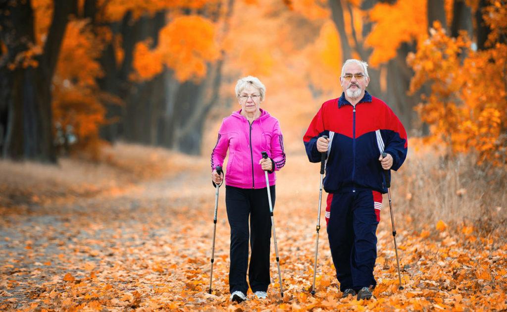 Бабушка с дедушкой идут по осеннему парку с палками